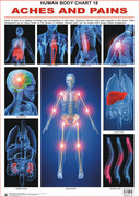 Aches and Pains - Human Body Chart 18